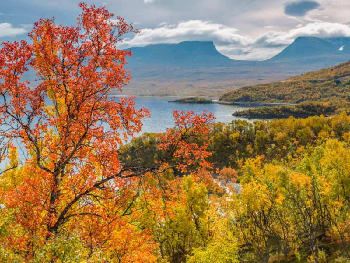 swedish lapland abisko autumn istk