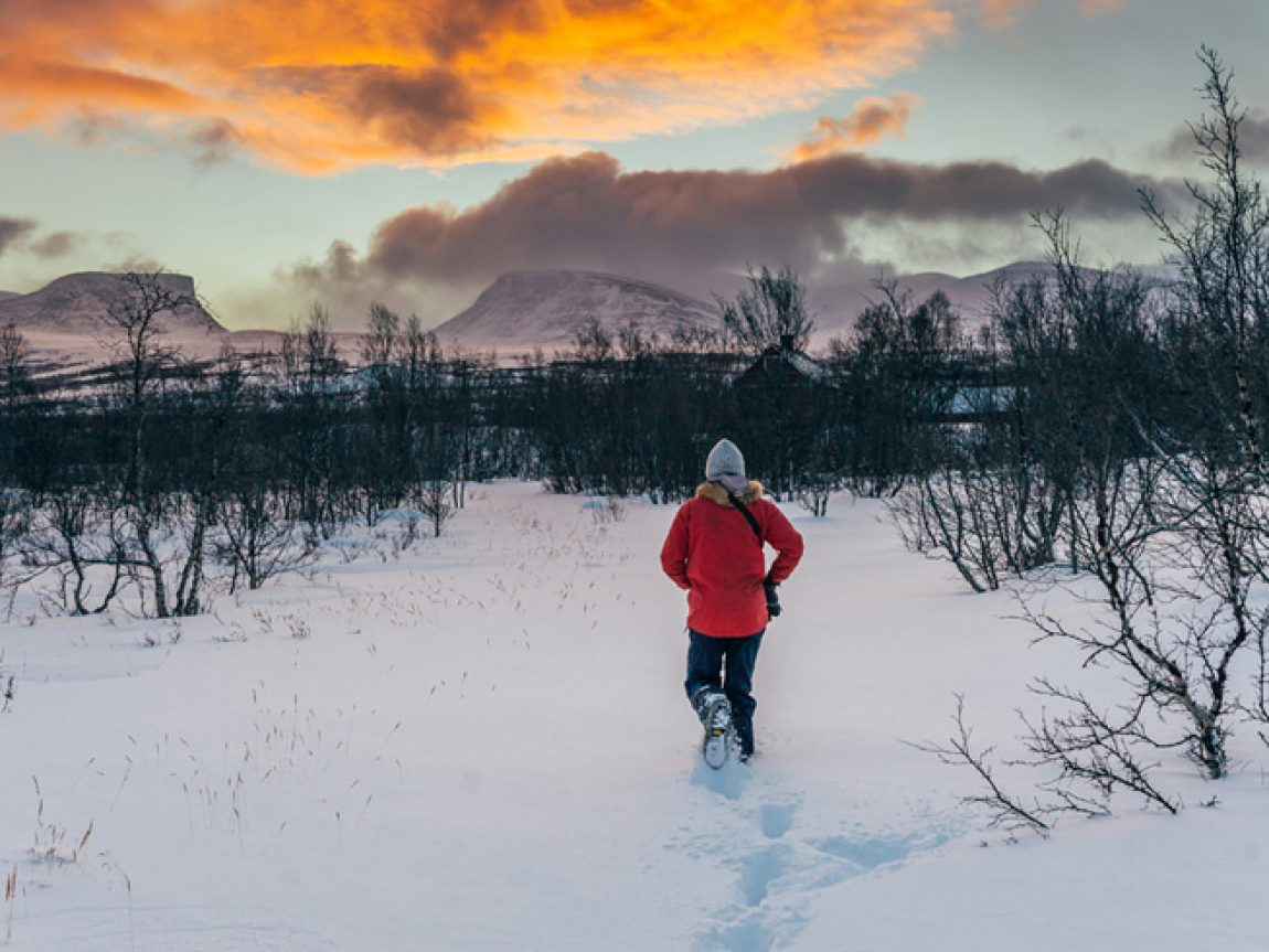 the ultimate guide to abisko blog discover the world