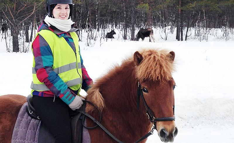 swedish lapland moose safari on horseback ripan
