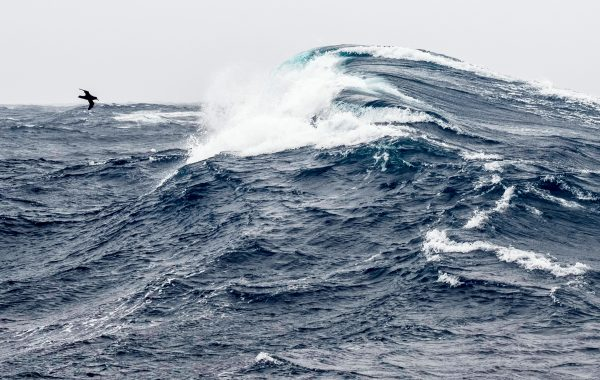 antarctica wave on drake passage istk