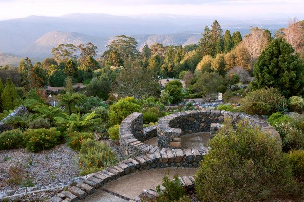 australia new south wales mt tomah botanic gardens istk