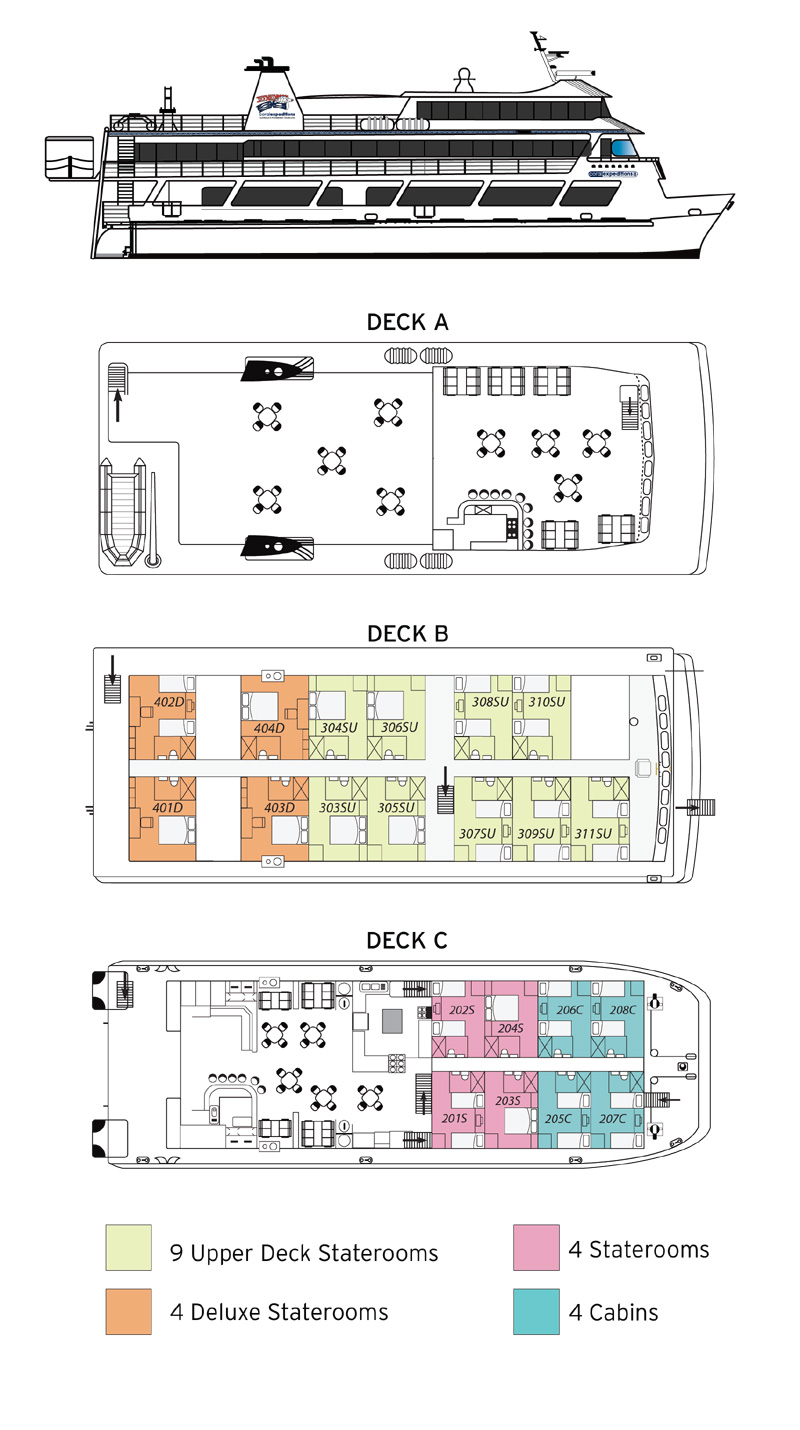 coral expeditions 2 deck plan