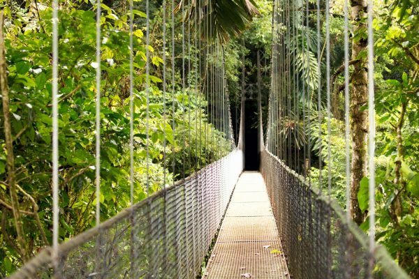 costa rica arenal national park hanging bridge istk