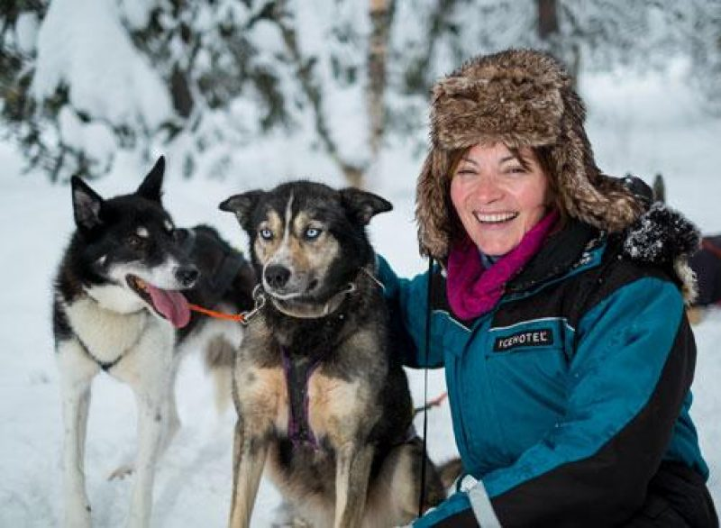 icehotel Lorraine Kelly with huskies at Icehotel