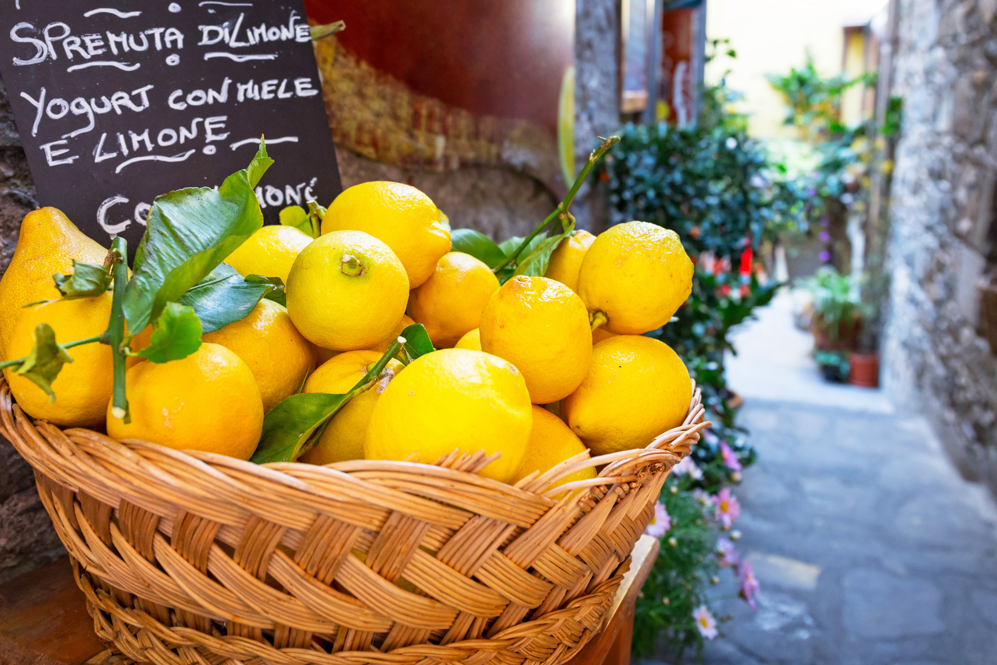 italy basket of lemons in street istk