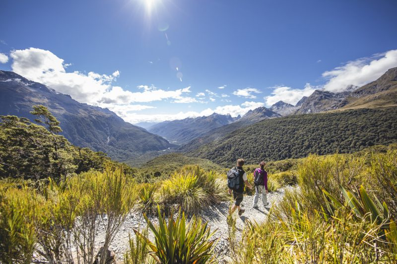 new zealand fiordland hiking to key summit the routeburn track tnz