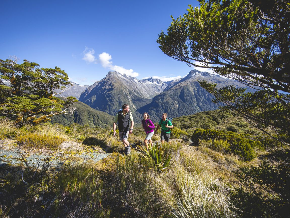 new zealand fiordland routeburn track hikers tnz