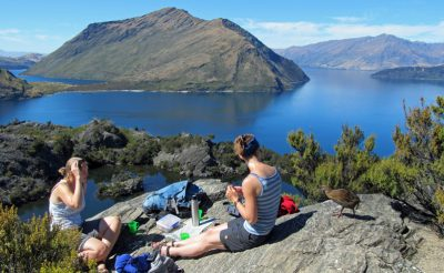 new zealand wanaka lake cruise and walk