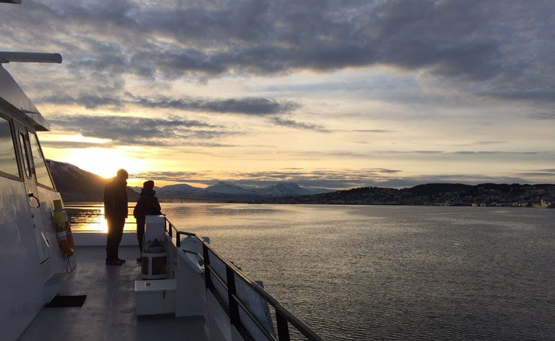 norway tromso whale watching tour sunset