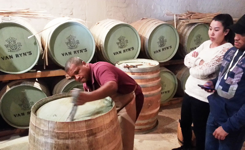 south africa winelands vine hopper tour