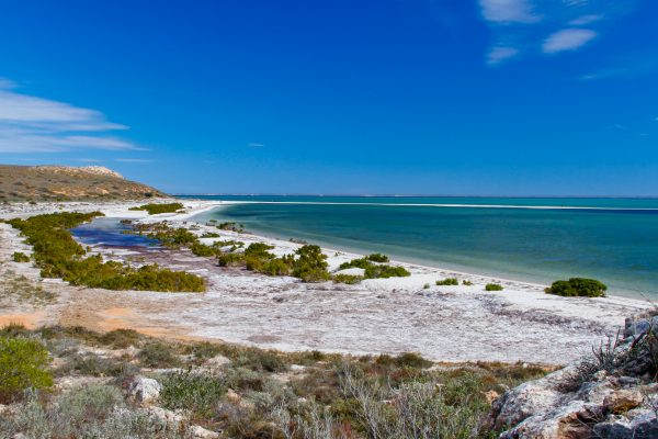 western australia shark bay view istk