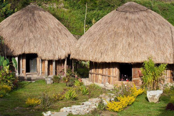 papua new guinea traditional huts istk