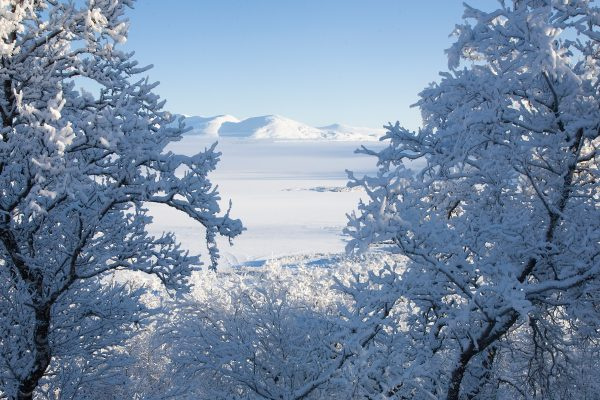 swedish lapland abisko winter view stf prosen