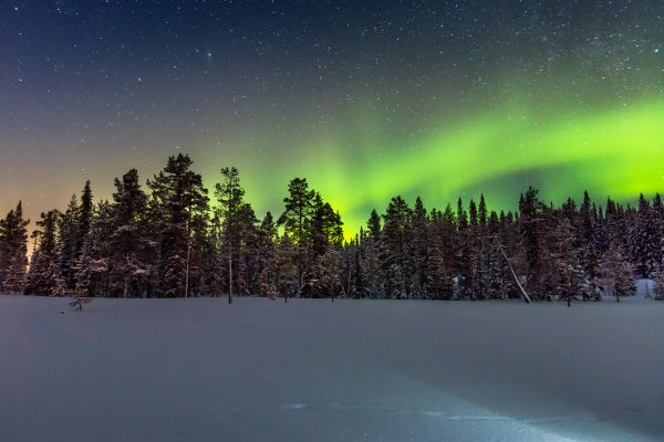 finnish lapland aurora over forest istk