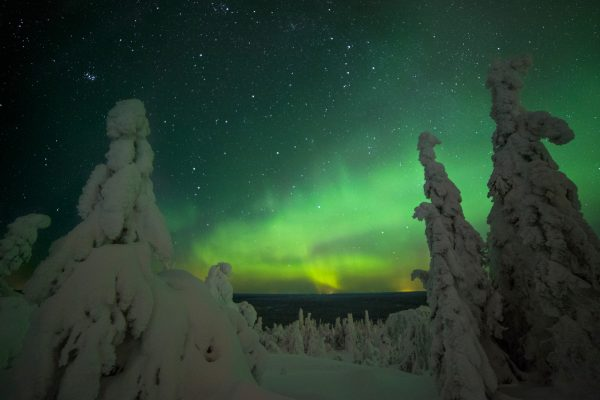 finnish lapland iso syote aurora forest view