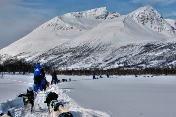 norway northern lyngen experience husky sledding
