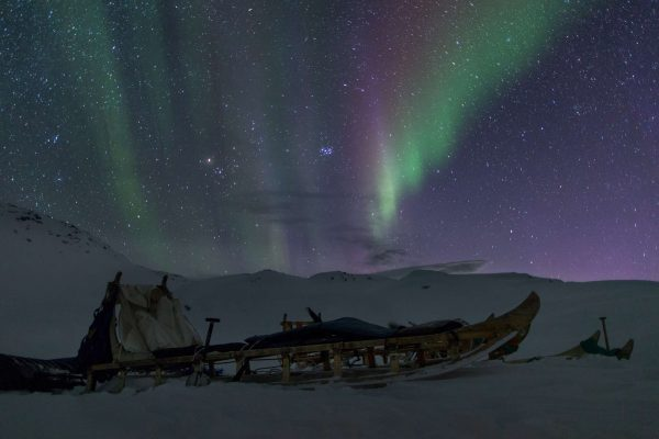 east greenland aurora over sled vg mp