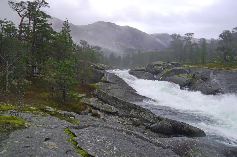 norway trail husedalen