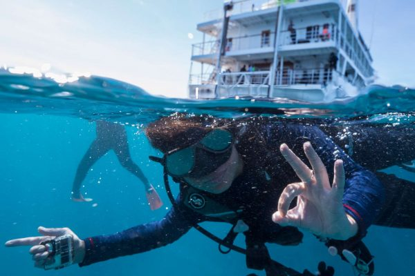 coral expeditions II ship diving