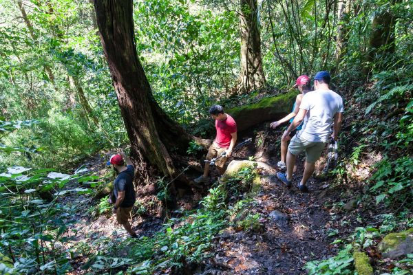 costa rica trekking in rainforest istk