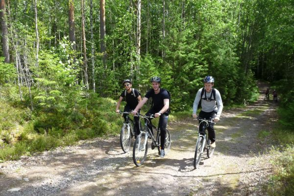 dalarna johannisholm cycling through forest