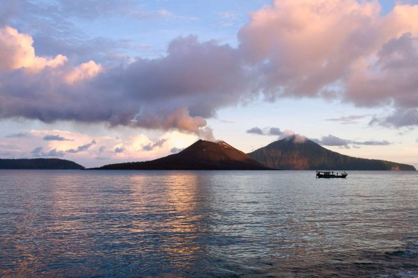 komodo dragons and krakatoa discover the world