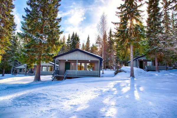 swedish lapland brandon lodge cabins amongst trees gr