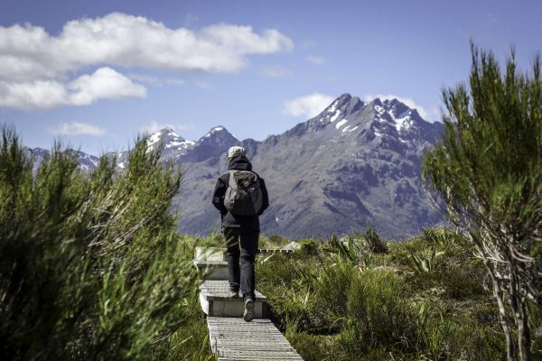 new zealand fiordland routeburn track path to key summit istk