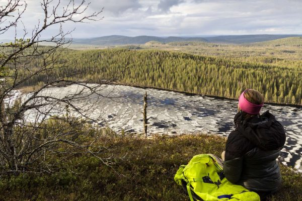 swedish lapland loggers lodge hiking in korgen nature reserve