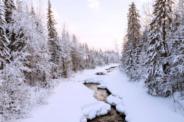 swedish lapland loggers lodge scenic surrounds ll
