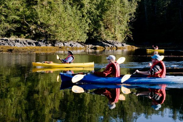 british columbia kayaking great bear rainforest bluewater adventures