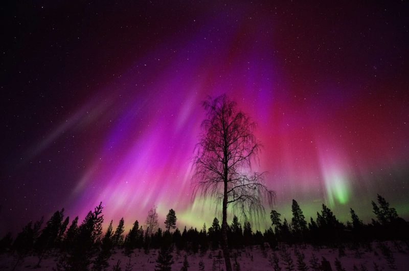 red aurora borealis seen over lapland istk