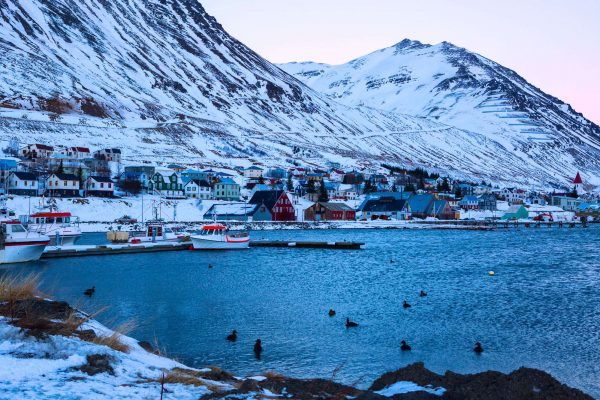 north iceland siglufjordur harbour winter dawn istk