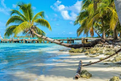 belize carrie bow caye beach istk
