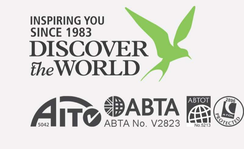 dtw since 1983 and bonding logos