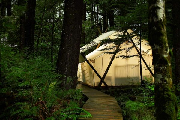 british columbia great bear rainforest safari tent crs