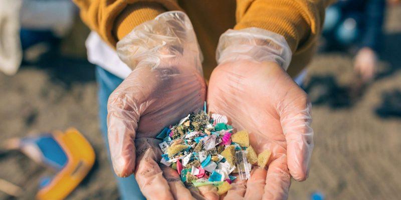 edu microplastic in hands