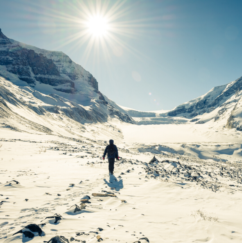 columbia icefield man walking