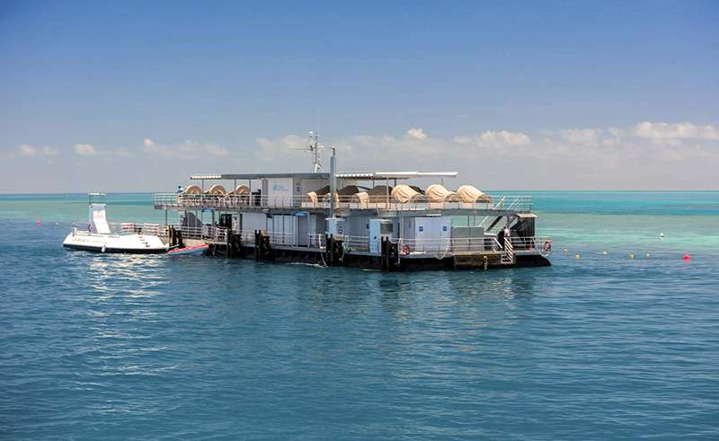 reefsleep reefworld pontoon view whitsundays