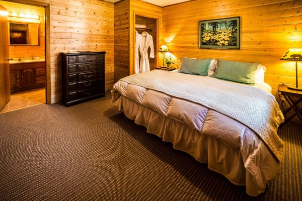 tutka bay lodge loon guest suite