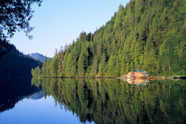 british columbia great bear lodge reflection