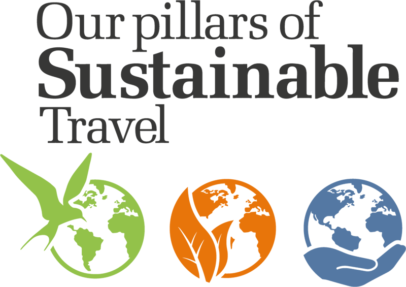 dtw pillars of sustainable travel logo