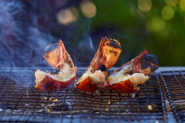 hawaii fairmont orchid big island grilled lobster
