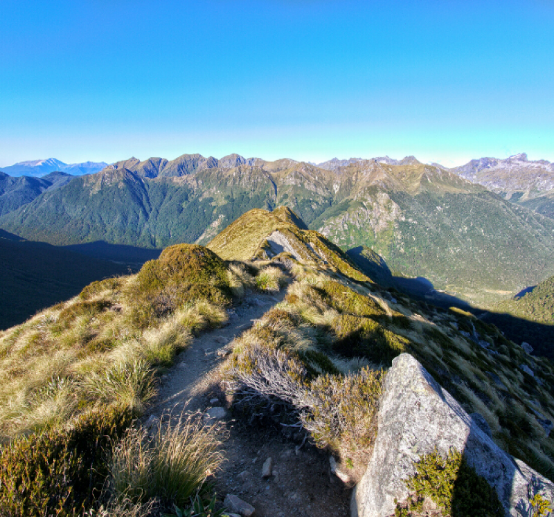 Hiking track in NZ