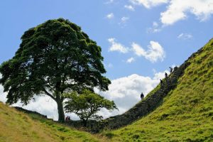 uk national parks hadrians wall descent ve