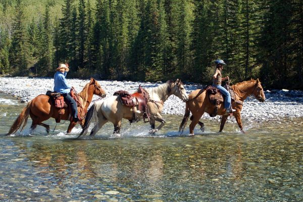 canada horse riding in rocky mountains istk
